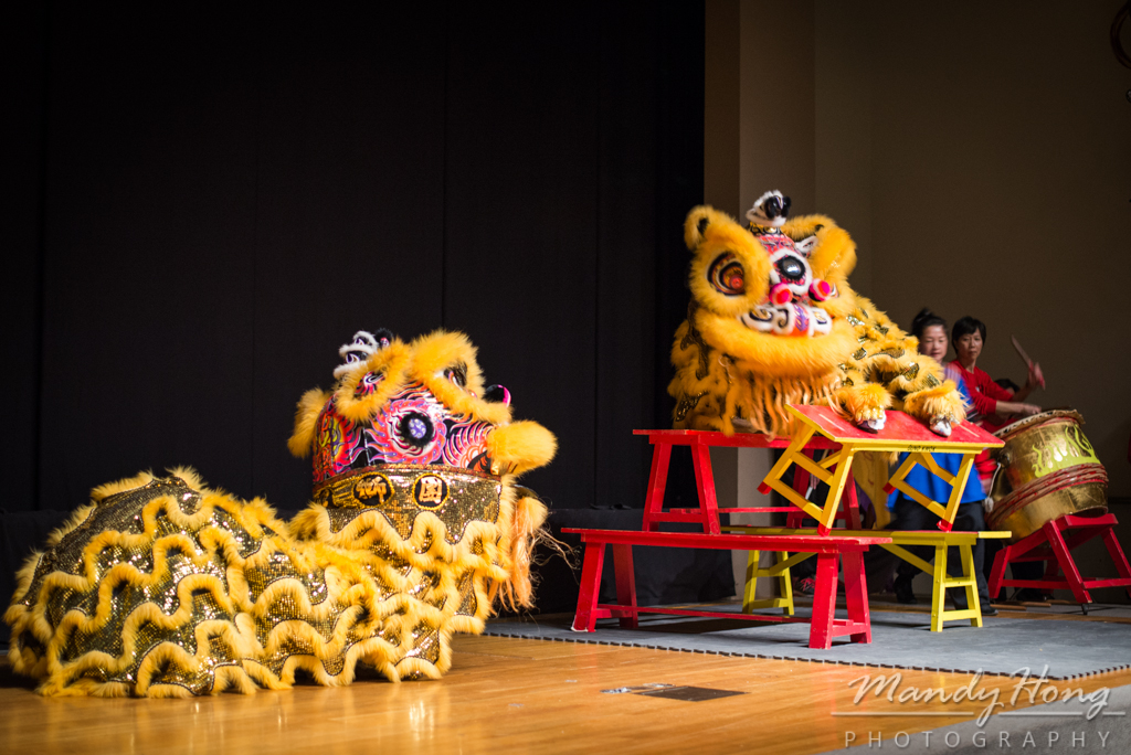 Gund Kwok at Museum of Fine Arts Boston by Mandy Hong